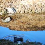 Lochan air Bealach Udal thumbnail