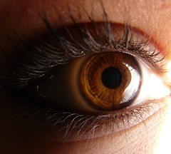 Auge :) (Lynnistrip ) Tags: auge wimpern blitzlicht