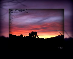 **suns royal colors (dagutzyone ) Tags: california sunset sky nature clouds scenery desert scenic joshuatree mojave mojavedesert yuccavalley morongobasin dagutzyone