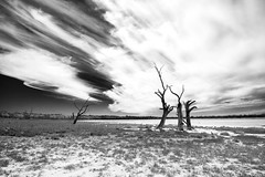 Waikerie (thescatteredimage) Tags: summer lake tree clouds landscape dead canon20d salt dry australia drought sa southaustralia 2009 cloudage sigma1020 waikerie