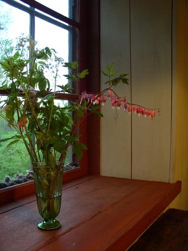 Miljö att må bra i. Foto av Milis Ivarsson, Av Jord. Äggoljetemperamålad fönsternisch.