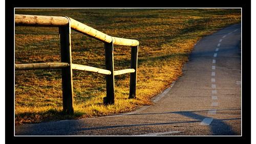 29.365 - Fence