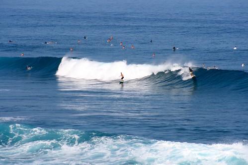 ho'okipa surfers