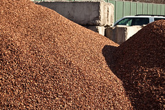 Cocoa Bean Shells 4 (PSNH) Tags: shells energy nh electricity portsmouth cocoa generation schiller renewable biomass lindt psnh cocoabeanshells publicserviceofnewhampshire eversourceenergy
