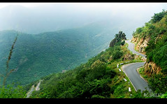 way to Munnar (RC Sreejith | ) Tags: road mist mountain nature hill kerala route hilltop hairpin munnar highrange keralatourism jith1312 sreejithrc rcsreejith mistymunnar