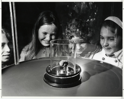 Children admire Apollo 11 lunar sample at the Academy in 1970.  N2579D, Copyright California Academy of Sciences Library, Special Collections.  Photo by Lloyd Ullberg.