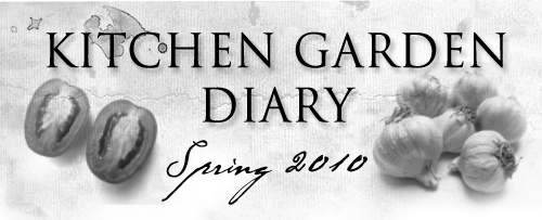 :: Kitchen Garden Diary: An Update!