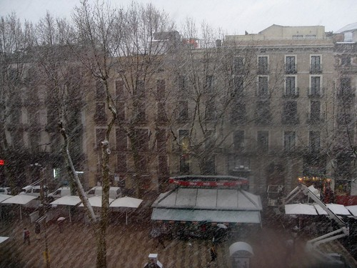 snowing on las ramblas!