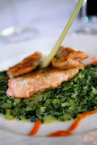salmon & creamed spinach 7665 R