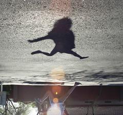shadow (Olivia Foley) Tags: trees shadow black tree me mailbox jump jumping mail upsidedown box pavement walk top side down mailboxes sidewalk boxes upside tar blacktop unsidedown