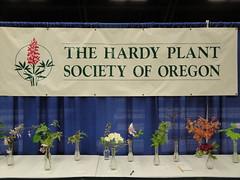 HPSO Banner