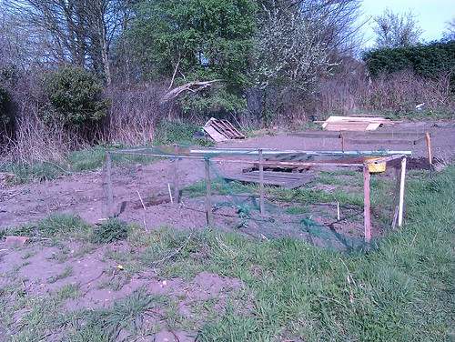 Allotment - the beginning