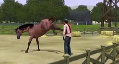 Sims 3 Pets 3