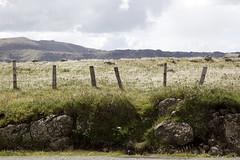 Summit Rd (Allyeska) Tags: newzealand landscape canterbury southisland peninsula banks akaroa