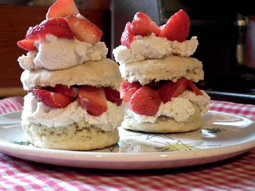 vegan shortcakes