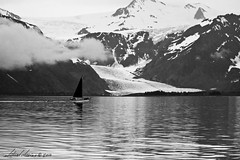 Sailboat before the Glacier (Michael Atkins) Tags: ocean bw snow mountains water alaska clouds sailboat landscape blackwhite gloomy glacier snowcappedmountains canon50d michaelatkins sailboatbeforetheglacier