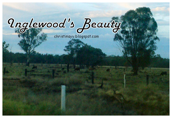 Toowoomba to Texas: Inglewood