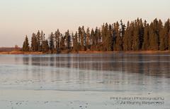 Elk Island (philinalberta) Tags: park trees water sunrise canon island woods edmonton wildlife alberta elkisland naturepark rebelxti astotinlake