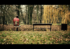The Bin, The Bench, The Chair (rasenkantenstein) Tags: trees red cinema man tree green leaves yellow shirt trash germany bench outside leaf chair day lawn saturday bin human magdeburg kai frame framing cinematic chill tone marko municipalpark toning rasenkantensten