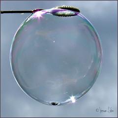 Bubble in the sky (Vronique Delaux On/Off) Tags: blue sky soap montpellier bleu ciel bubble reflets transparence bulle photographe savon trappes gotag vroniquedelaux cratitudesnolimits vroniquedelaux delaux photographemontpellier