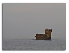La roca del Salpatx (ouyea...) Tags: sea sky island mar seagull cel girona cielo catalunya möwe isla gaviota roca  mouette lescala illa gavina altempordà ouyea lumixdmcl1 lumixdmcl1varioelmarr4575200mm essalpatx varioelmarr4575200mm