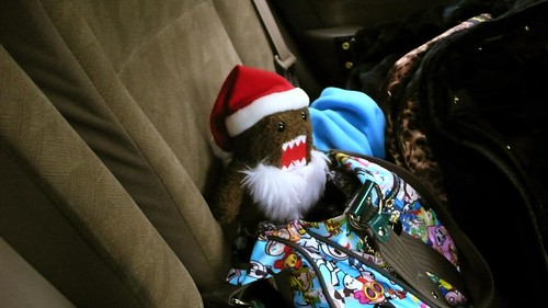 domo enjoying the ride