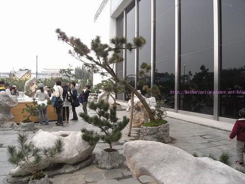 katharine娃娃 拍攝的 9戶外展場。