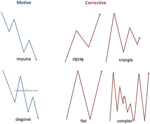 basic-waves-bear
