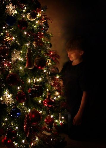 logan christmas tree 5x7 copy
