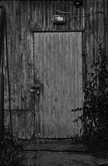 Gammal pltdrr (photographer Hans Wessberg) Tags: monochrome se blackwhite sweden sverige rostig drr svartvitt vsternorrland frrd fagervik timr medelpad municipalityoftimra timrbogserbtbrgning