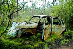 Fiat 1100-103 (Peter Bromley) Tags: old cars abandoned graveyard car rural nikon rust automobile d70 nikond70 sweden decay rusty swedish abandon swamp rusting scrapyard left decaying bromley urbex bilar ke danielsson junkheap kyrkmosse skroptbilar