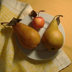 Fruit Trio. (Esther Spektor - Thanks for 11+ millions views..) Tags: lighting red stilllife white macro art texture apple fruits leaves yellow table image plate towel simplicity pear dishes everydaylife coth supershot bej goldstaraward