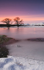 The Big Freeze (Kenny Muir) Tags: snow tree landscape sony hills morton thornhill lowther