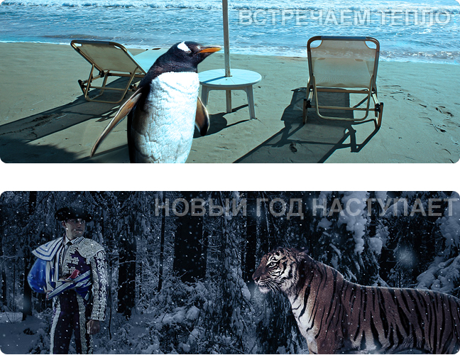 boldismedia_teaser_restyle
