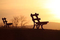 """""""Loneliness"""" (Geraint Rowland Photography) Tags: autumn sunset sun grass wales bench loneliness afternoon emotion furniture cymru atmosphere newport seats lonely welsh benches emptybenches anawesomeshot colorphotoaward alltyrynavenue ridgewayhill newportuniversity celtichorizon rydercupnewport"""
