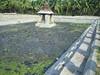 604. Hampi(22): A public bathing tank (profmpc) Tags: water stonecarving hampi vijayangara thungabhadra kodandaramatemple krishnadevarayar publicbathingtank