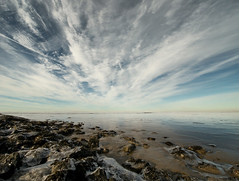 The sky is huge... (Danil) Tags: morning cloud seascape reflection landscape march daniel sunday explore frontpage tidal duitsland 2010 dollard emden d300 eems nieuweschans naturalreserve wolkenlucht dyksterhusen theskyishuge betweengermanyandholland frozenwaterworld