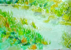 Ciuccio's  Challenge !! (Nadia Abduch) Tags: wood verde green garden watercolor nadia foto natural natureza paisagem jardim watercolour challenge desenho campestre aquarela paisagismo grafia abduch watercolou nadiaabduch