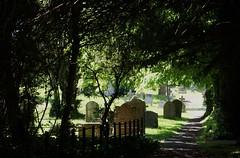 St.Mary's Churchyard, Wendover, Bucks. (dlanor smada) Tags: bucks churchyards wendover ashowoff