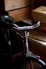 Britville Hercules Bike (Jeff Presnail) Tags: bike bicycle antique hercules thepinnaclehof tphofweek97