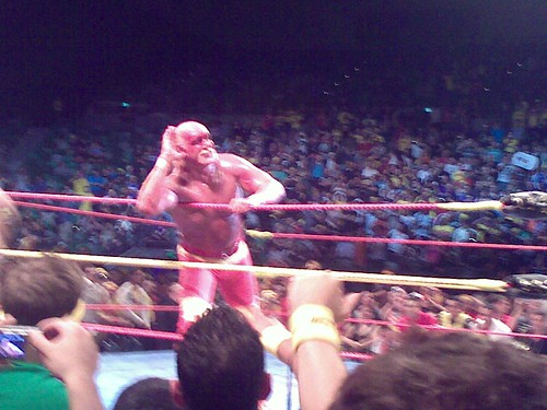 Hogan listening for the crowd