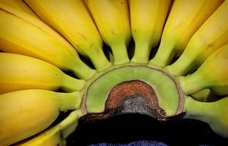 Fan of bananas