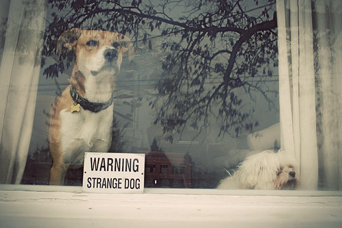 warning strange household!
