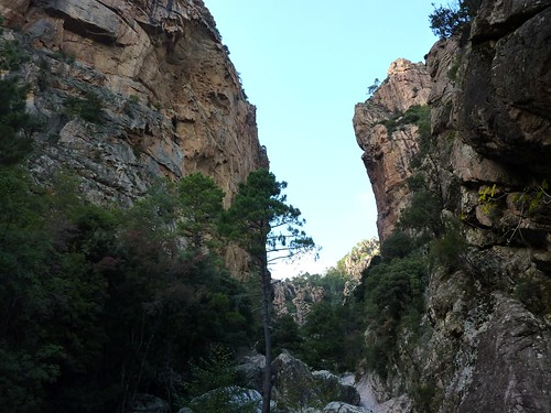 Le canyon de Carciara (la 'porte de Bavella')