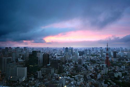フリー写真素材, 建築・建造物, 都市・街, 高層ビル, 朝日・朝焼け・日の出, 霧・霞, 日本, 東京都, 東京タワー,