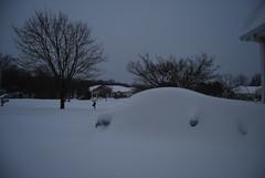 December 2009 Snow 2009-12-20 003