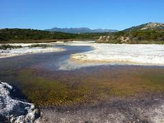 L'étang et l'embouchure du ruisseau de Saparelli