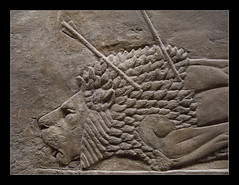 British Museum, London (Martin Beek) Tags: shadow london iraq lion picture culture relief britishmuseum assyria antiquities royallionhunt room10a