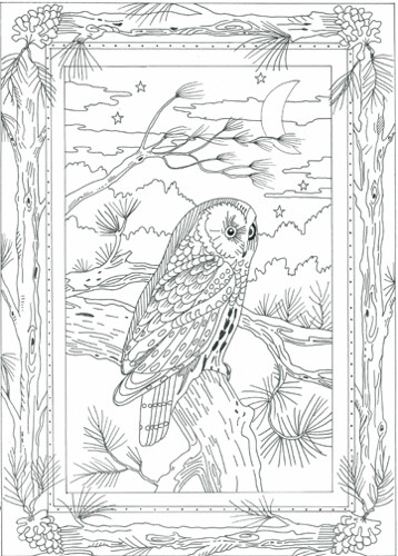 ... Barn owl coloring page for adults: coloring pages owl with roses ...