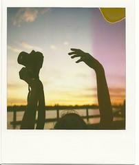 day sixteen. (fivefortyfive) Tags: camera sunset sky birds silhouette clouds hair polaroid nikon purple streak dumb horizon tags fivefortyfive 779film polaroidsx70sonar annieiknowyouthinkyourhandsareawkward maggieannre